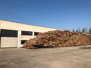 Tronchi legno 2